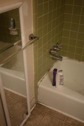 http://tonydahlgren.com/files/gimgs/th-5_bathroom_pt1-1.jpg